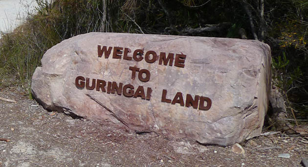 Welcome to Guringai Land